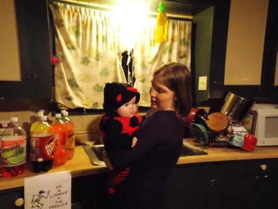 Baby ladybug & mommy