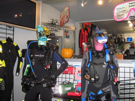 Wetsuits modeled by fish!