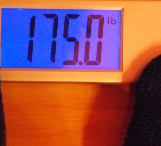 Jai's Weigh-In - Week 37