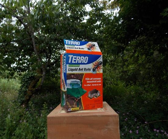 Terro Ant Bait Giveaway 2 Winners